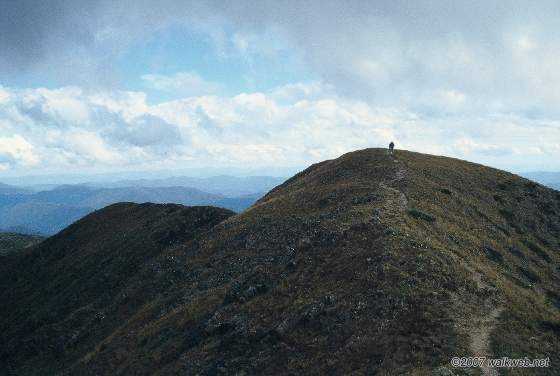 Looking towards mt feathertop summit