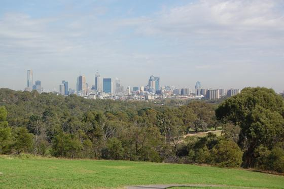 View of city from Wills St picnic area